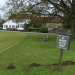 Moles on Tilford green