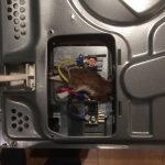Mouse electrocuted in cooker.